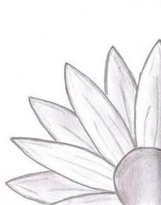 53 ideas for drawing flowers simple easy Pencil Drawings Of Nature, Easy Flower Drawings, Girly Drawings, Cute Kawaii Drawings, Cool Art Drawings, Chalk Drawings, Drawing Flowers, Easy Drawing Designs, Drawing Ideas