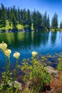 Mason Lake, Washington State