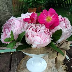 Bowl of peony beauty
