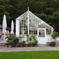 Rosendal hagecafé og drivhus serverer nå lunsj 11.30-17.00. #greenhouse #baroniet #rosendal #baronietrosendal #norge #norway #beautiful #garden #visitnorway