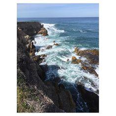 Caliparks : Montaña de Oro State Park Local Parks, Park Photos, California Coast, Central Coast, Park City, Regional, State Parks, Hiking, Gold