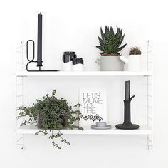 Nordic composition with plants and object black and white. So nice