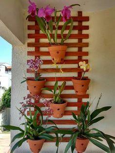 Best 11 Taman angrek – SkillOfKing.Com Orchid Planters, Orchids Garden, Garden Trees, Garden Art, Hanging Plants On Fence, Plant Projects, Vertical Garden Diy, Container Gardening Vegetables, Tropical Garden