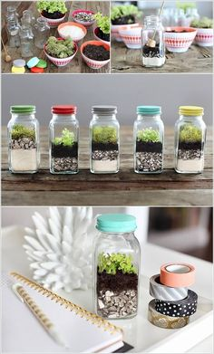 DIY Glass Terrarium Ideas (A Guide to Making Terrariums & Maintenance . - DIY Glass Terrarium Ideas (A guide to making terrariums & maintenance - Mini Terrarium, How To Make Terrariums, Succulent Terrarium Diy, Terrarium Plants, Succulent Outdoor, Glass Terrarium Ideas, Rustic Terrariums, Cactus Plants, Water Terrarium