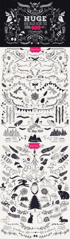 HUGE Hand drawn Nature Pack Elements Studio Chem Creative Market