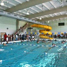 City and County of San Francisco public indoor swimming pool. Six twenty five yard lanes with racing blocks, two water slides, smaller pool for younger. Kid Pool, Indoor Swimming Pools, Water Slides, Bay Area, Hamilton, Activities For Kids, San Francisco, Public, City
