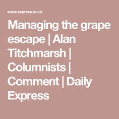 Managing the grape escape | Alan Titchmarsh | Columnists | Comment | Daily Express