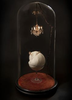 Rat in a champagne glass, with a chandelier, under glass.