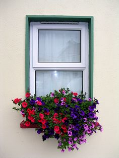 love window boxes...