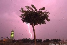 """weathermanwill54: """"A bright lightning bolt lights up the skies over the Central Valley this evening SIMPLY AMAZING!! Pic (still frame from the video footage I took) taken from around Santa Nella Village CA just west of Los Banos CA just off I-5. One of the t-storms around had gone severe-warned! A good deal of lightning was observed as this line of storms came right over me. It was an interesting Cinco de Mayo for me (Thursday evening May 5 2016) Weather scenario particularly for May 4-7…"""