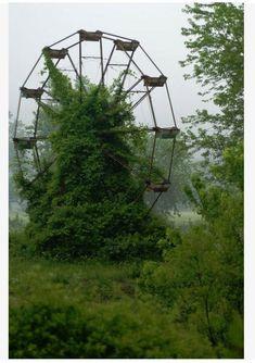 Abandoned Ferris Wheel - North Carolina by olive