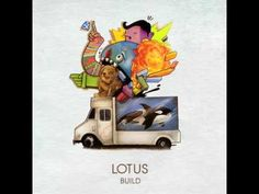 Lotus - Massif