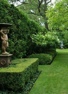 Neatly trimmed boxwood hedges keeps order in the garden Boxwood Garden, Topiary Garden, Topiaries, Garden Hedges, Love Garden, Dream Garden, Shade Garden, Formal Gardens, Outdoor Gardens
