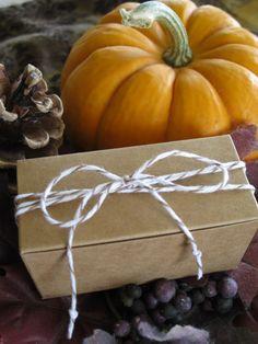 Baker's twine ideas from Nashville Wraps.  http://www.nashvillewrapscommunity.com/blog/2013/08/bakers-twine-favor-boxes-craft-ideas/ #wholesalebakerstwine #cutefavorboxes