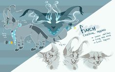 Finch Reference - June 2016 by Finchwing on DeviantArt