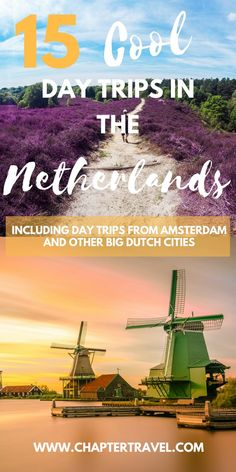 Day Trips The Netherlands | Things To Do In The Netherlands | Canals Amsterdam | Day Trips From Amsterdam | Zaanse Schans | Explore the Castle de Haar | Rotterdam Architecture | Windmills Kinderdijk | Canals Utrecht | De Hoge Veluwe | Veluwezoom Purple Heather | Royal Palace The Hague | Typical Dutch Town Volendam | Maastricht | Historic Netherlands | Museum Voorlinden | Keukenhof The Netherlands | Dutch Tulips | Efteling | Orchideeën Hoeve | Things To Do Flevoland | Zeeland | Cheese }…