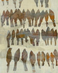 Eastern Towhee Specimens - Shae Warnick - Acrylic on cradled panel - art, painting