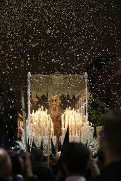 I M Proud, Bride Of Christ, Palm Sunday, God Is Good, Wallpaper, Sacramento, Catholic, Religion, Plaza