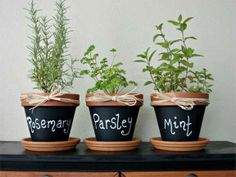 Flower Pots Painted With Chalkboard Paint This Is Great For Our Herb Garden Plans Love Best Thing Ever Created