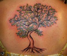 Nice looking tree