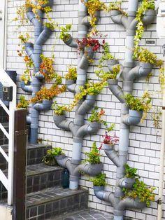 As idéias do uso de tubos de PVC de plástico em sua casa de verão. Discussão sobre LiveInternet - Serviço russo diários on-line