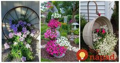 Ak milujete kvety, toto vám určite ulahodí. Krásne nápady, ako pestovať kvety, ktoré si šikovní ľudia vyrobili úplne sami. nepotrebujete kupovať nové kvetináče, vystačíte si len s tým, čo máte doma. Inšpirujte sa!