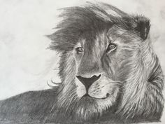 Lion, Drawings, Animaux, Lions, Leo