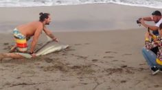 Man pulls shark from the sea to snap some selfies http://ift.tt/1RXvrqN  A man was filmed capturing a small shark from the ocean in Palm Beach Florida and snapping selfies with the fish before releasing it.  WPTV reporterAshleigh Waltersfirst shared the video on her Facebook page. The man-bun-sporting beachgoer can be seen pulling the shark from the water and dragging it to shore.  SEE ALSO: Tourists swarmed a baby dolphin for photos then left it for dead  The man then posed with the fish…