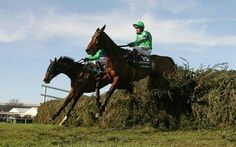 Mon Mome - the 100/1 winner of the Grand National - jumping the final fence in front.