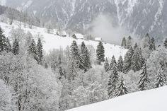 Braunwald im Kanton Glarus Schweiz Switzerland, Snow, Travel, Outdoor, Forests, Outdoors, Viajes, Trips, Outdoor Living