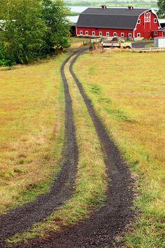 Lane to the barn....