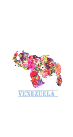 Wallpaper Venezuela My Land, Outdoor Art, Wedding Humor, Animal Tattoos, Art And Architecture, South America, Latin America, Iphone Wallpaper, Country