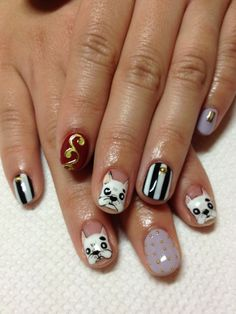 Doggie Manicure (Are those Frenchies? Bostons?)
