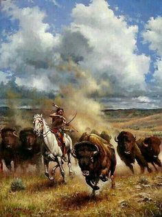 A Native American ~ Hunting Buffalo. (By: Don Oelze.) A Native American ~ Hunting Buffalo. (By: Don Oelze. Native American Paintings, Native American Pictures, Native American Artists, Native American History, Indian Paintings, Native American Hunting, Native American Warrior, Navajo, West Art
