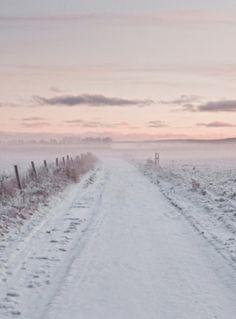 Winter Pink - WAUW