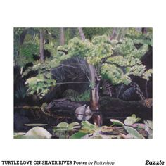 TURTLE LOVE ON SILVER RIVER Poster