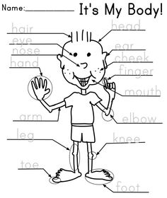 Label the parts of the human body. Free worksheets for