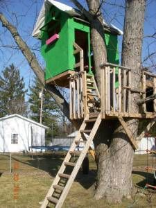 Future Tree Houses pallet tree house; we need to build something like this for the
