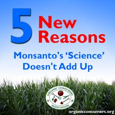How long can Monsanto ignore the mounting scientific evidence that their technology is not only failing to live up to its promises, it's putting public health at risk?