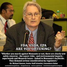 """Monsanto's herbicide glyphosate -- trade name RoundUp -- which is used on most genetically engineered crops, is sparking new and serious concern, not just among GMO opponents but among health and environment experts globally. Glyphosate (RoundUp) has long been touted as virtually harmless. EPA doesn't even bother to test for residues in food, having decided years ago they pose little risk. But studies to the contrary have gradually been accumulating, and in March of this year, 17 experts from 1"