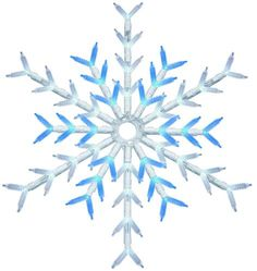 "18"" LED Blue/White Snowflake at Menards; $14.99 sale"