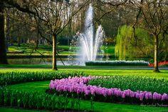 Keukenhof Spring Tulip Gardens Lisse The Netherlands
