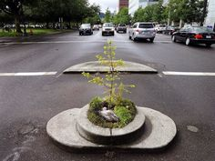 Mill Ends, in Portland, Oregon, has a diameter of just two meters, which officially makes it the smallest park in the world.