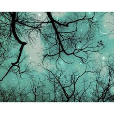 Winter Teal Christmas Sky.. It would be so cool if bedroom walls could be painted like this!