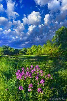 Spring Morning - Wisconsin