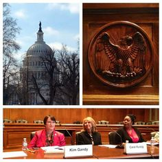 """""""We have the ability to end domestic violence if we commit to keeping this issue at the forefront,"""" said Avon Foundation for Women President Carol Kurzig at the March 6 Congressional Briefing where she presented the 2013 National Domestic Violence Census Report."""
