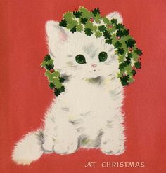 Christmas card kitten - where I got this has over 4000 vintage xmas cards!