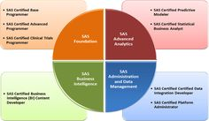 SAS Certification Modules