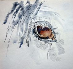 horse eye by Threadspider Horse Drawings, Pencil Art Drawings, Animal Drawings, Watercolor Horse, Watercolor Paintings, Watercolour, Horse Artwork, Equine Art, Funny Art