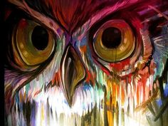 beautiful owl painting